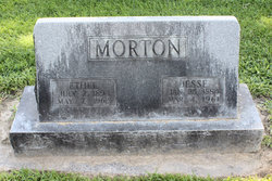 Ethel <i>Chamberlain</i> Morton