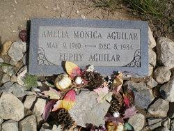 Amelia Monica Aguilar
