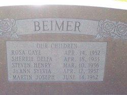 Delfa S <i>Sanders</i> Beimer