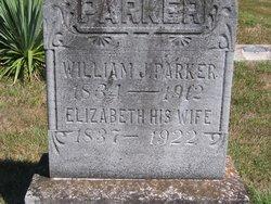 Elizabeth Ann <i>Owens</i> Parker