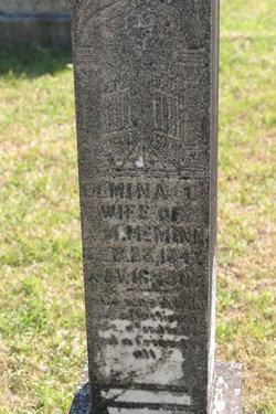 Elmina C. <i>Kilpatrick</i> McMinn