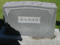 Lee DeMott Ellis