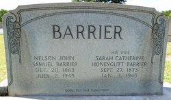 Nelson John Samuel Barrier
