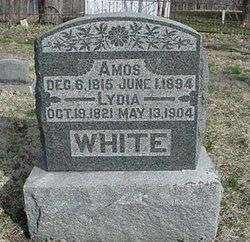 Lydia <i>Webb</i> White