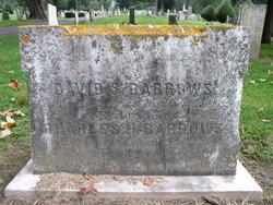 David S Barrows