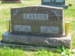 Lloyd L Castor