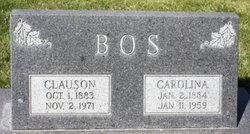 Clauson Bos