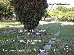 Eugenia Elvira <i>Adams</i> Thomas