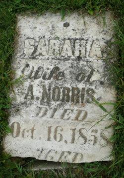 Sarah A <i>Bowlsby</i> Norris