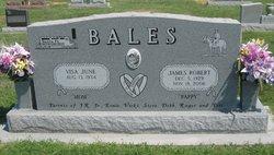 James W. J.R. Bales