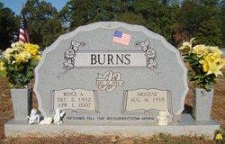 Royce Allen Burns