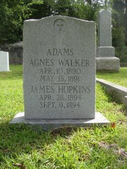 Agnes Walker Adams