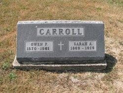 Owen P Carroll
