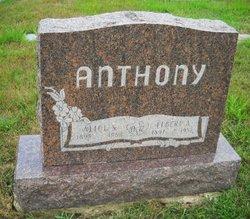 Alice S Anthony