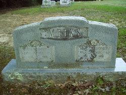 Sarah Buena Vista <i>Jennings</i> Meeks