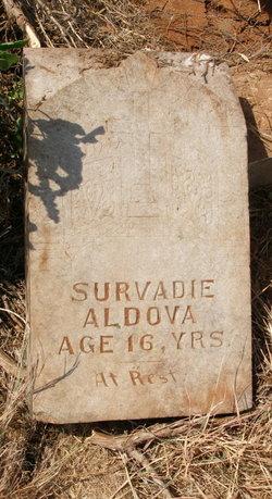 Survadie Aldova