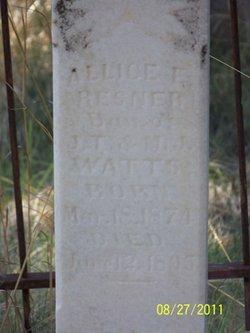 Allice E. <i>Watts</i> Besner
