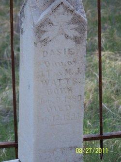 Dasie Watts