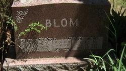 Charles Vernon Blom