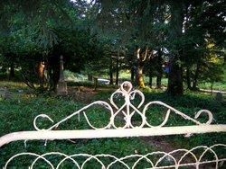 Dibble-Jackson-Larkins-Austin Cemetery