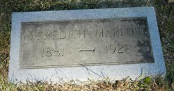 Meredith D Marlow