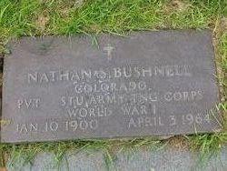 Nathan Sylvan Bushnell