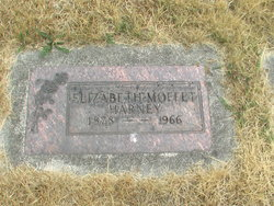 Elizabeth Harney