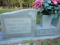 Viney <i>Taylor</i> Barton