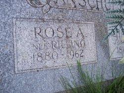 Rose Anschuetz