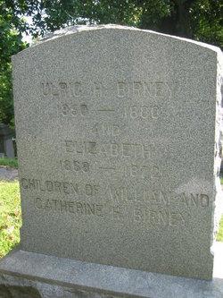 Ulrich H. Birney