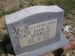 Eloy S Sedillo