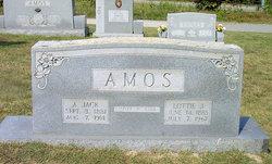 Andrew Jackson Jack Amos