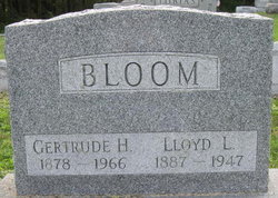 Lloyd Luther Bloom