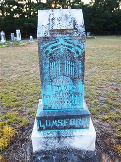 Texas Olive <i>Anderson</i> Lunsford