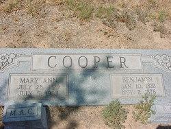 Mary Jane <i>Cooper</i> Alvis