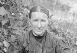 Jane Sholtz <i>Wood</i> Allen