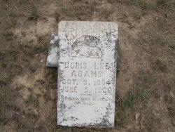 Doris Lee Adams