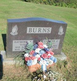 Carolyn J Dolly <i>Brown</i> Burns
