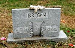 James Albert Brown