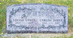 Louise Ethel White