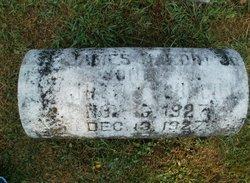 James Hardin Councill, Jr