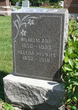 William Arp