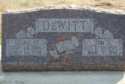 Jim Albert DeWitt