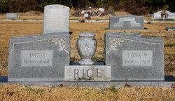 Edna Victoria <i>Boston</i> Rice