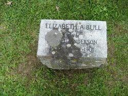 Elizabeth A <i>Bull</i> Anderson