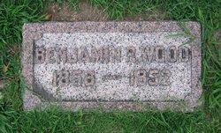 Benjamin R Wood