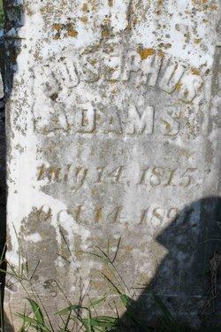Josephus Adams