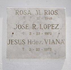 Jes�s Hern�ndez Viana