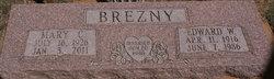 Edward Wesley Brezny