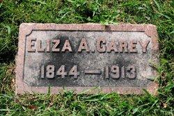 Eliza Ann <i>Reagan</i> Carey